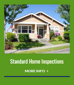 standard home inspections